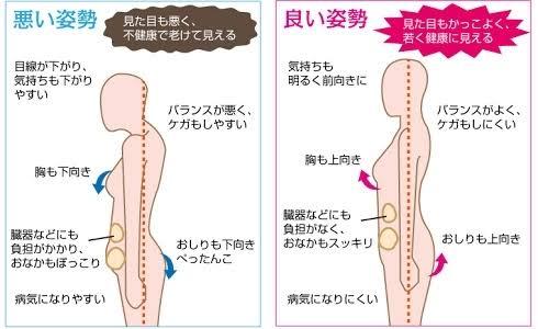 ヨガ基本姿勢背骨のS字カーブ